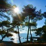 Ile Ste Marguerite Cannes crique paradis