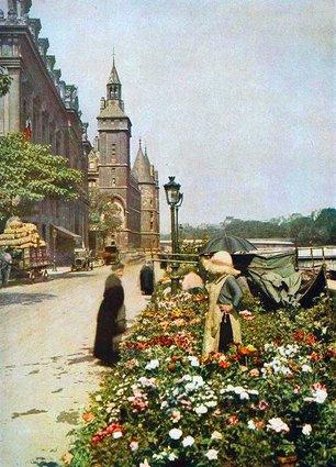 Paris marché aux fleurs photos en couleurs