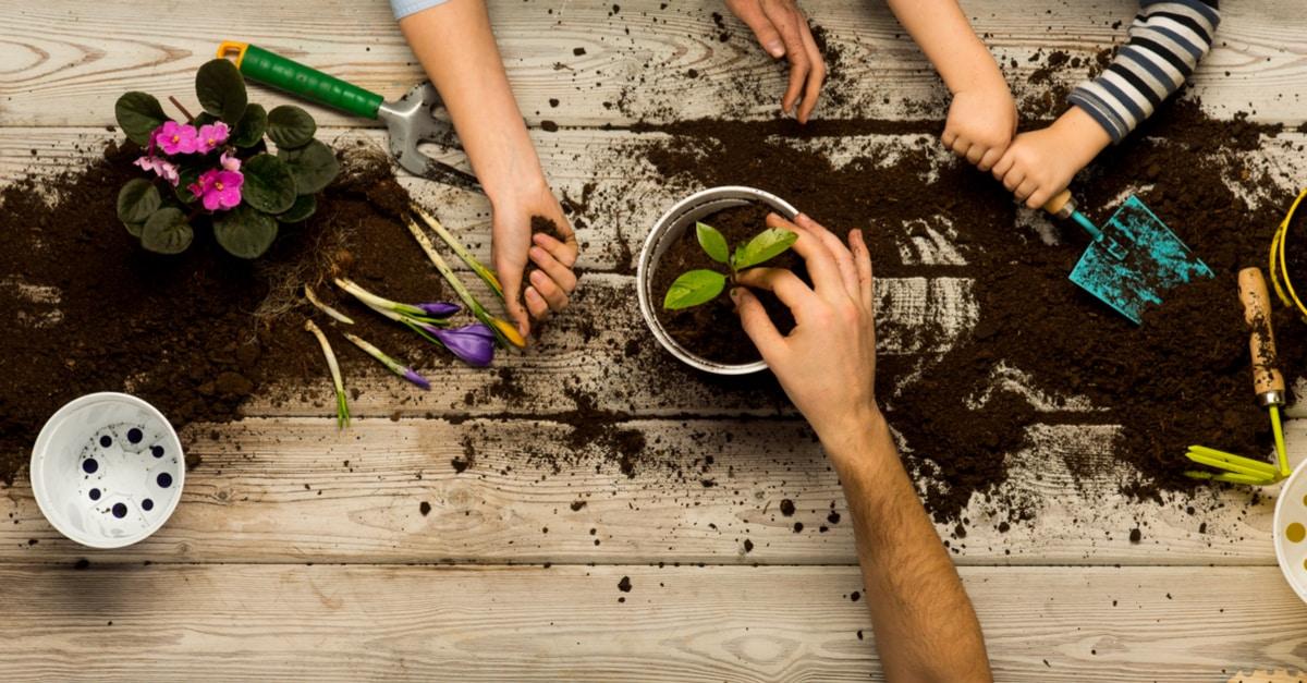 cours jardinage bio gratuits Paris