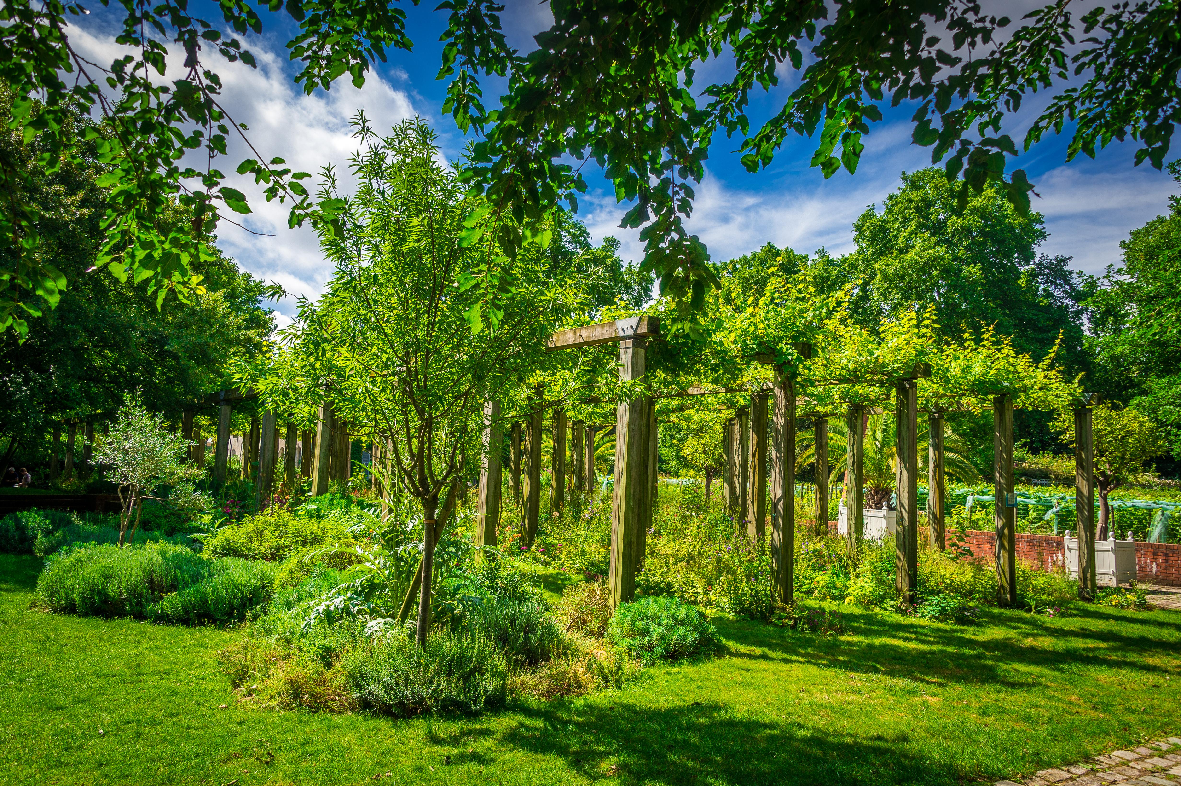 Parc de Bercy cours de jardinage Paris