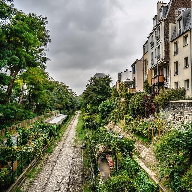 insolite jardin paris Petite Ceinture