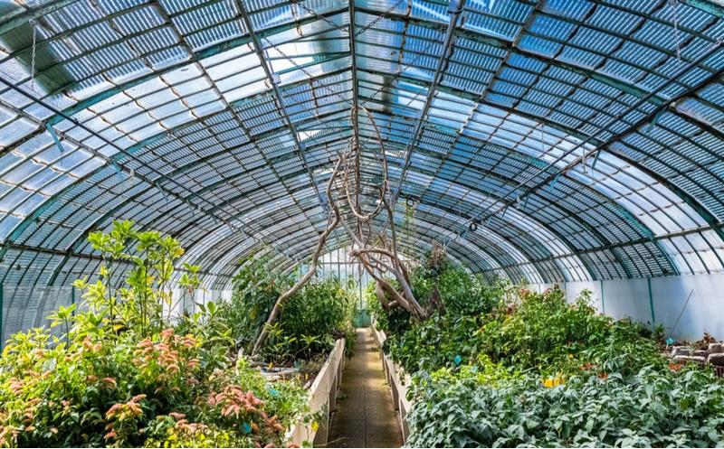 Jardin botanique Paris