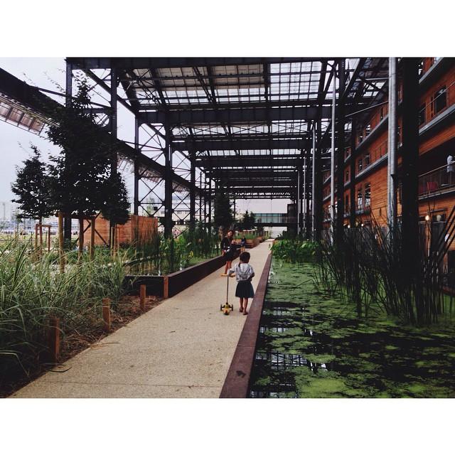 jardin Rosa Luxembourg