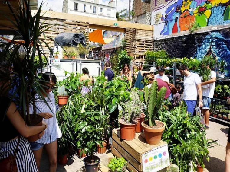 Ménilmontant : une grande vente de plantes organisée ce week-end !