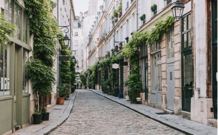 grande vente plantes paris