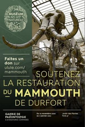 parrainage mammouth