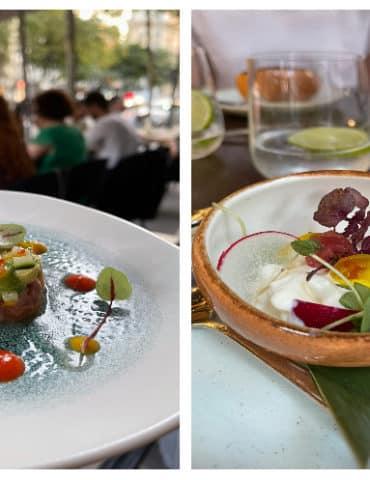 Shiro le nouveau restaurant parisien vivre paris