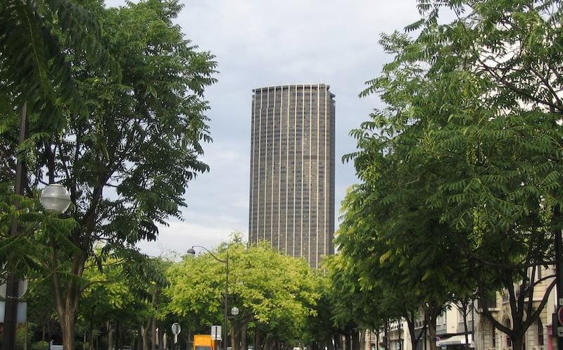 La première forêt urbaine plantée sur la place de Cologne d'ici 2024 !